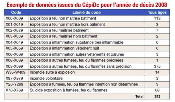 Capture Tableau CépiDc Combien de morts par incendie en France chaque année