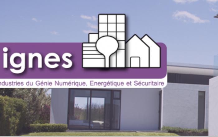 Benoît Coquard nommé président d'IGNES